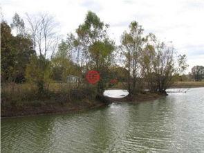 美国密西西比州亚祖城的房产USD 91,000 美国房产密西西比州亚祖城房产房价 居外网