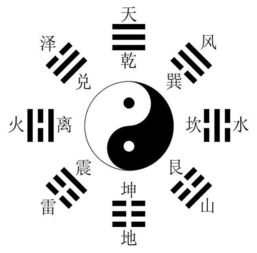 爻 这个字念什么 是什么意思