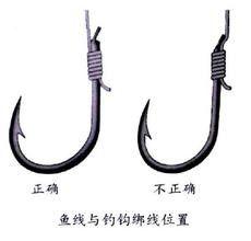 绑鱼钩连接器(用什么线绑鱼钩)