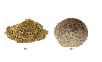 海沙和河沙养花