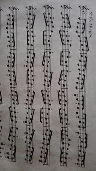 短乐谱及音乐小知识