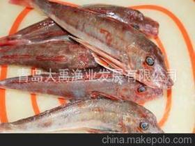 舟山渔老大一网捕上两吨野生大黄鱼 卖了250万