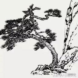 拿画松树来说举例论证