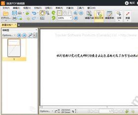 PDF编辑器中文版如何在PDF中添加文本