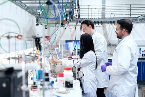 掘金数据处理,制药行业的价值将被重新定义