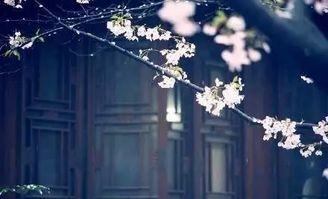 古诗赏析 夜深知雪重,时闻折竹声