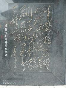 刘禹锡的诗关于祝寿的诗句