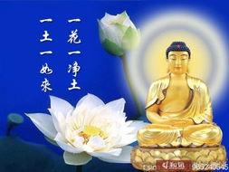 阿弥陀佛 晓风残月 有人问佛陀 世界一切是永恒的..