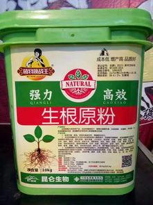 移栽树木生根粉怎么用
