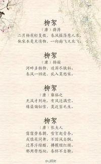飞絮的诗歌