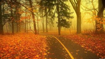描写秋天气候特点的匹字词语有