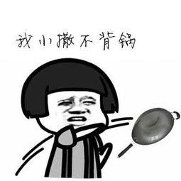 甩锅(。pp)