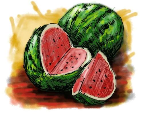 炎炎夏日,你吃瓜了吗?  多吃西瓜好不好