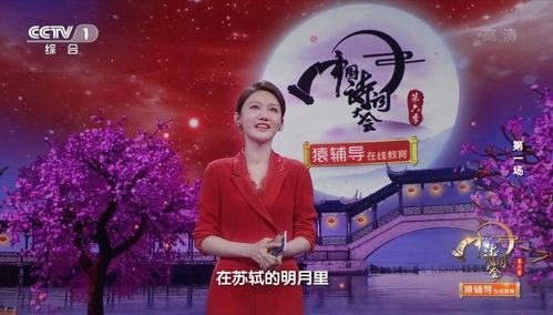 中国诗词大会龙洋引用8首诗词当开场白,笑容可掬,春风拂面