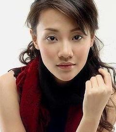何炅的老婆王菁照片