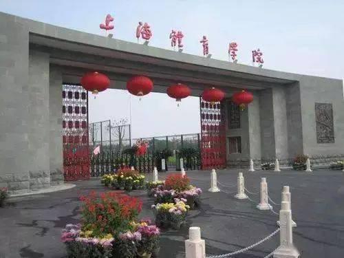 上海哪些大学有音乐系 专升本