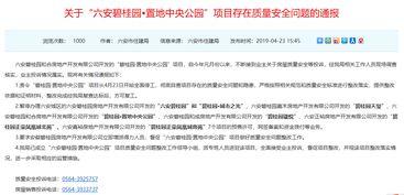六安市住建局暂停碧桂园7项目预售许可和网签备案