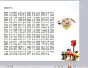 宝宝起名网免费6