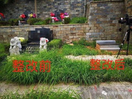 墓地朝向一般朝哪边方向(周易卦象64卦中的父母,兄弟,子孙,妻财,官鬼