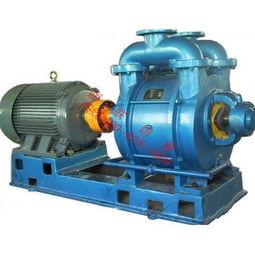安徽2bv5131水环式真空泵,爪式真空泵,