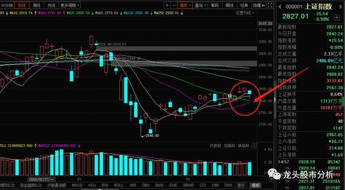 分析上证指数就是分析股票吗