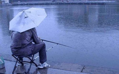 关于钓鱼时下雨的诗句