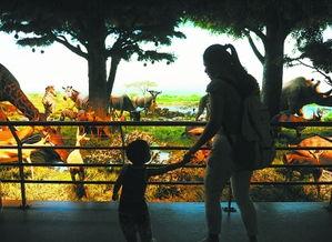 到自然博物馆 感受 丝路之夜
