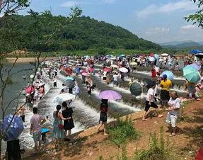 网红坝出事了杭州一家人去打卡,15岁儿子不幸溺亡