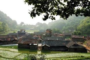 惊艳 浙江美而神奇的石头村