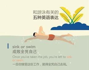 形容游泳游的好的谚语