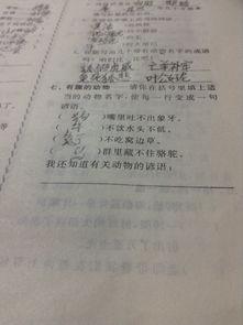 中英动物谚语文献综述