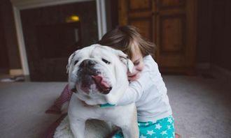 纪实摄影rebeccaleimbach小女孩和斗牛犬