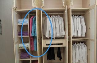 2.4米衣柜平开门分二节