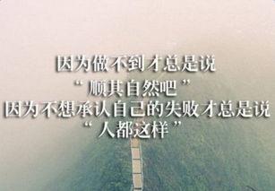 大学茶店创业计划书范文