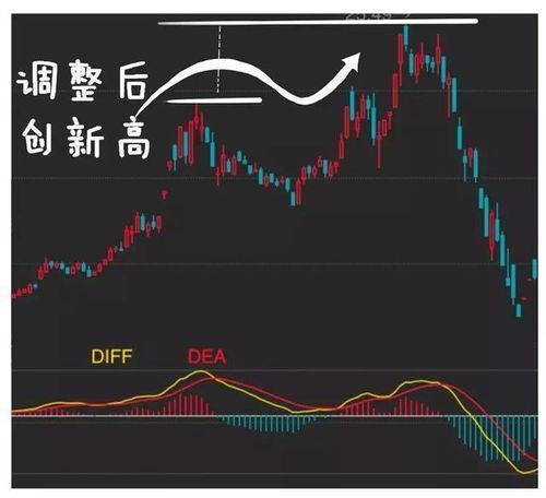 股票的具体解释