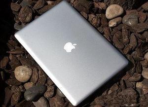 苹果Pro 313旋风来袭 13.3寸小本高内涵