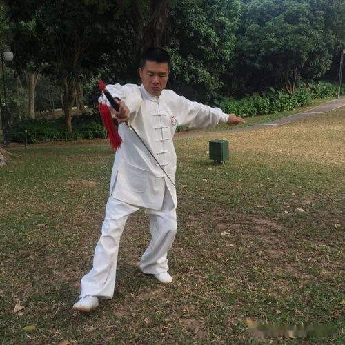 峨嵋禅拳二十四式套路与招式实战详解(上),打法迅猛、气势逼人  峨眉武术套路一名称