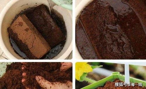 土砖打碎的土可以用来养花吗