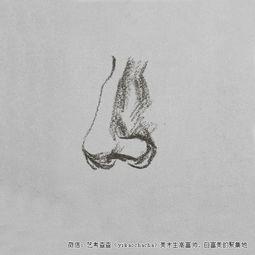高考速写鼻子的画法示范