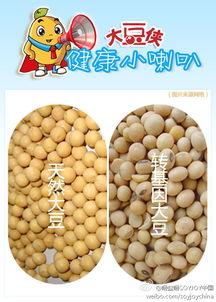 大豆用英语怎么说