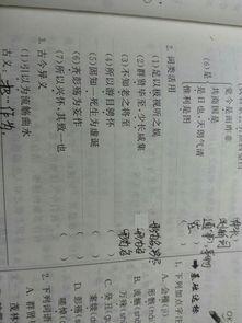 兰亭集序翻译字词重点句子