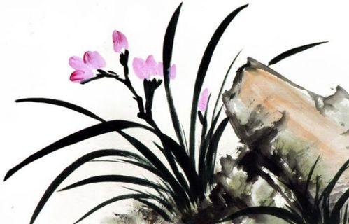 花类古诗句