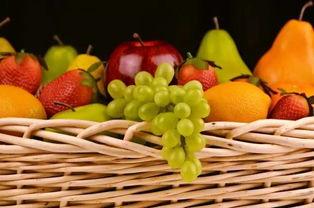 育儿水果小