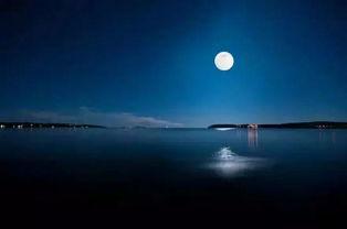 有关月光的名句