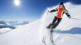 滑雪的基础知识