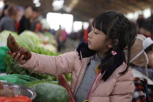 《爸爸去哪儿》难度升级孩子们独立买菜