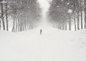 大雪纷飞后的泰山
