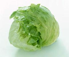 养生提示 常吃圆白菜的七大好处