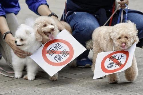 自1822年世界上首个反虐待动物法案在英国通过开始,已有100多个国家和地区出台了针对反虐待动物的法律。