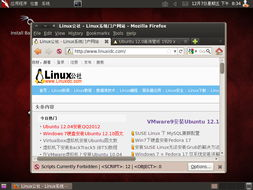 VMware虚拟机下安装BackTrack5 BT5 汉化教程